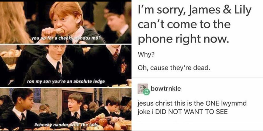 Harry Potter memes   Harry Potter reactions