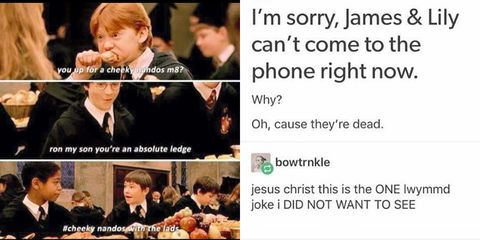 25 memes only Harry Potter fans will get