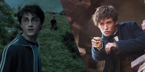 This Newt Scamander reference in Harry Potter and the Prisoner of Azkaban is blowing fans minds