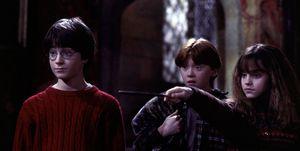 Harry Potter Ron y Hermione