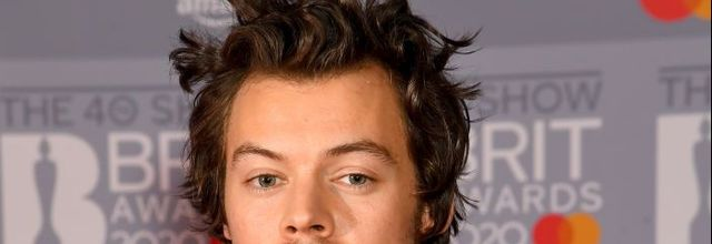 Harry Styles Was Robbed At Knifepoint On Valentine's Day