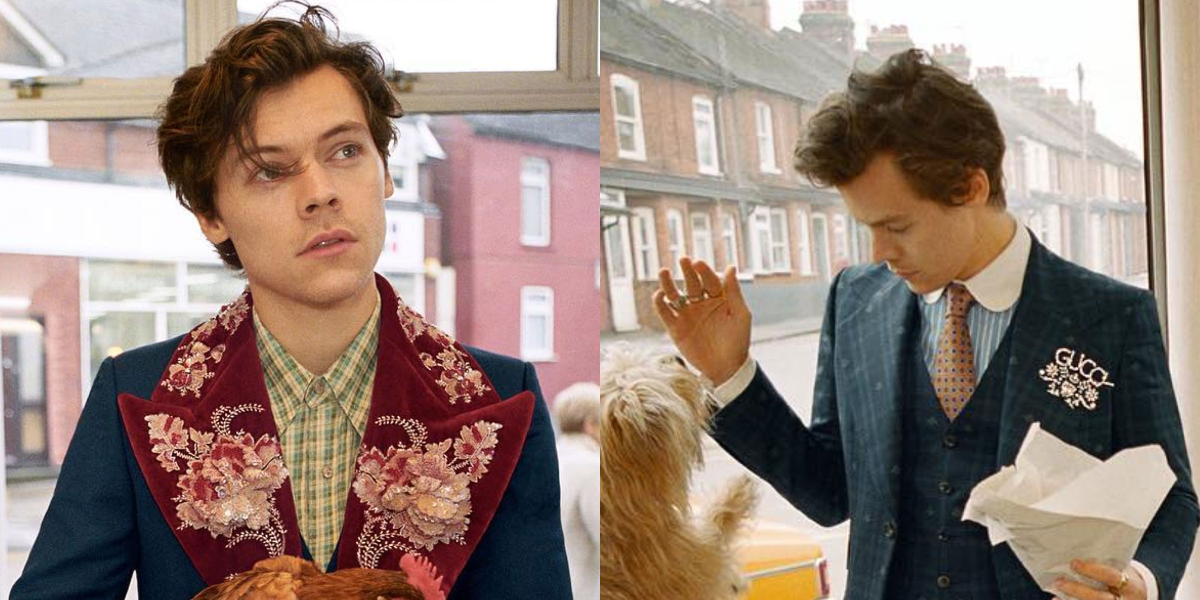 bfe1ed55491 Harry Styles New Gucci Tailoring Campaign Pictures - Harry Styles Gucci  Campaign