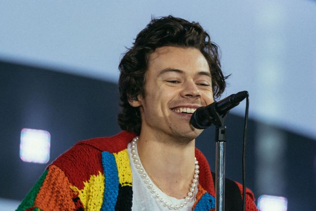 Harry Styles Confirms He Is A Pescatarian