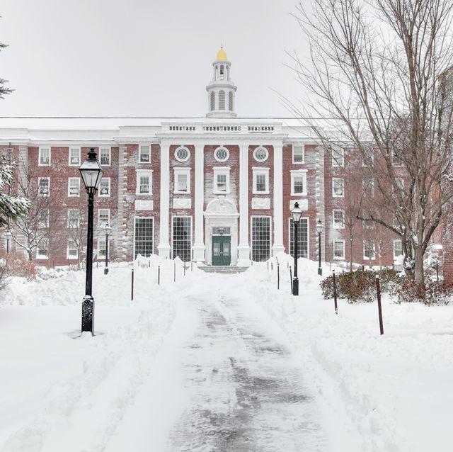 Harvard in Winter