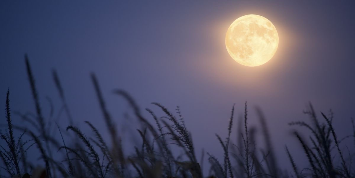 A Rare October Harvest Moon Will Illuminate the Sky Next Week