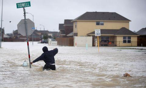 Water, Flood, Wave, Geological phenomenon, Fun, Recreation, Snow, Winter, Wind, Play,