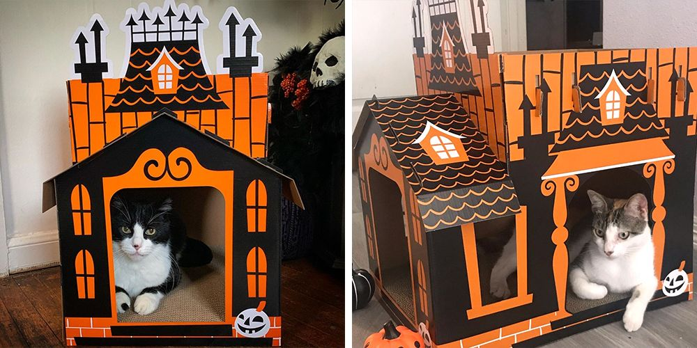Best Car Cleaning Products >> You Can Get a Haunted House for Your Cat at Target, So They Can Celebrate Halloween, Too