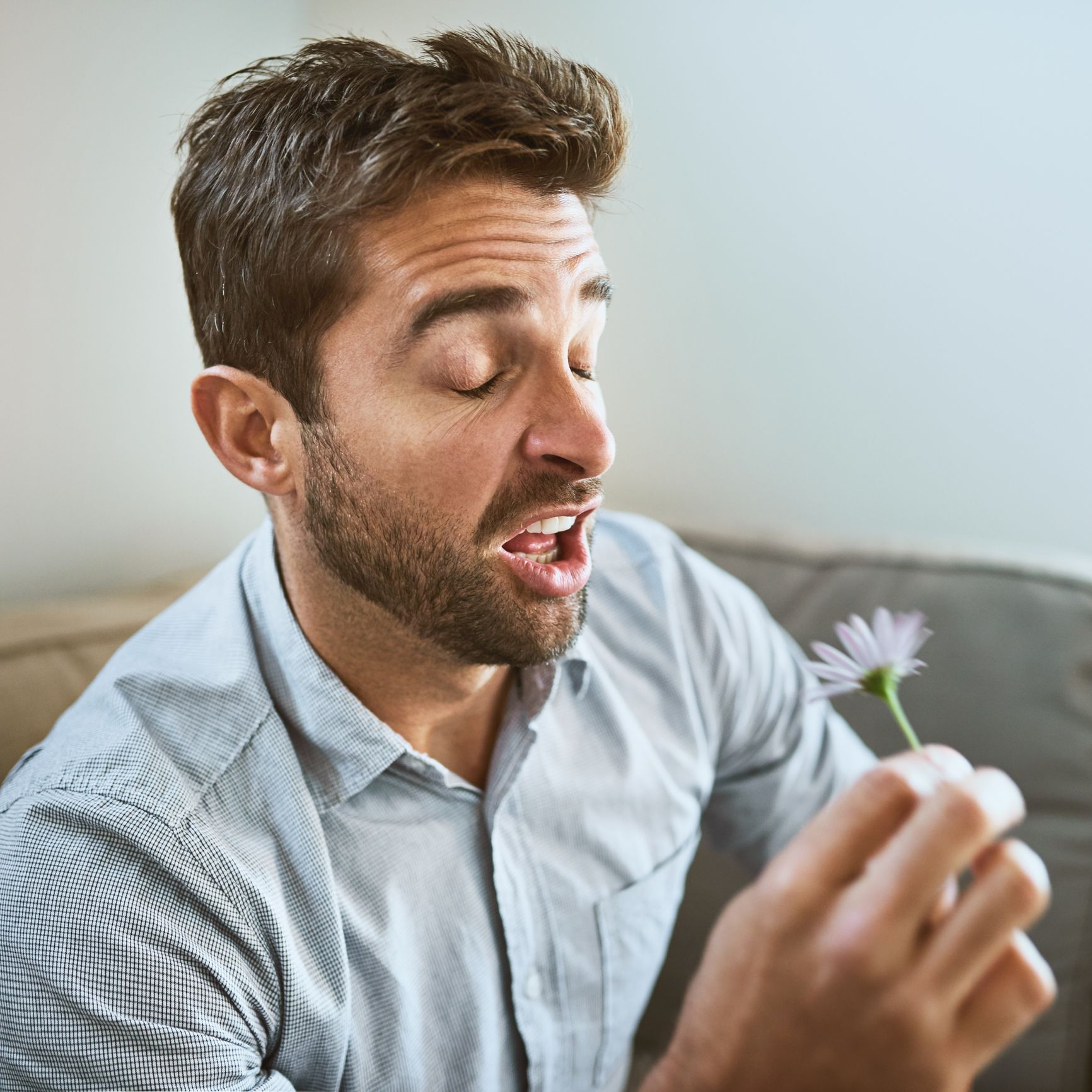 How to stop hay fever in its tracks