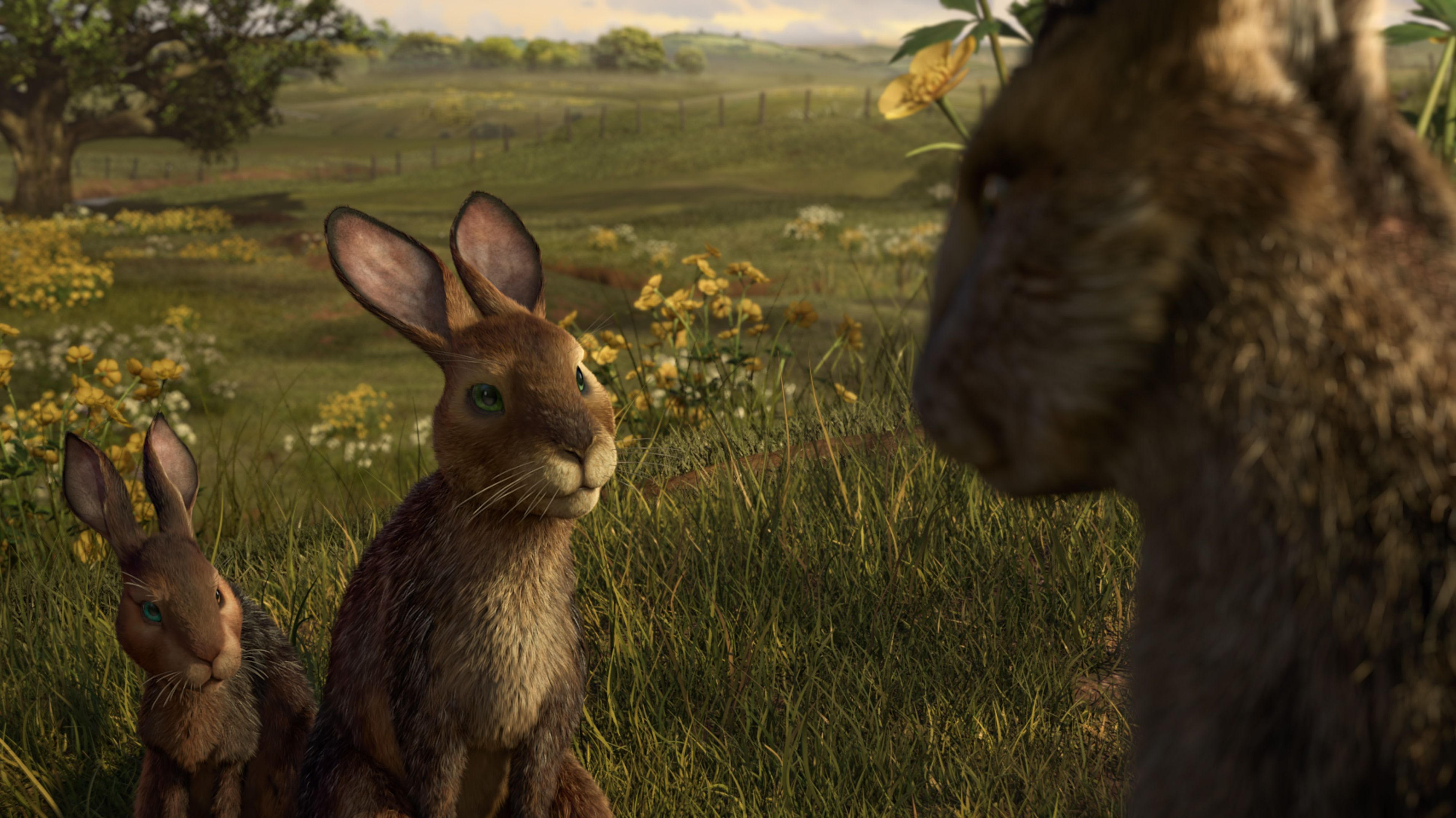 Hazel and Fiver inWatership Down