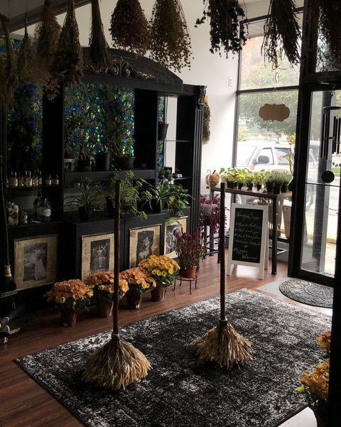 November Sage Magical Brooms