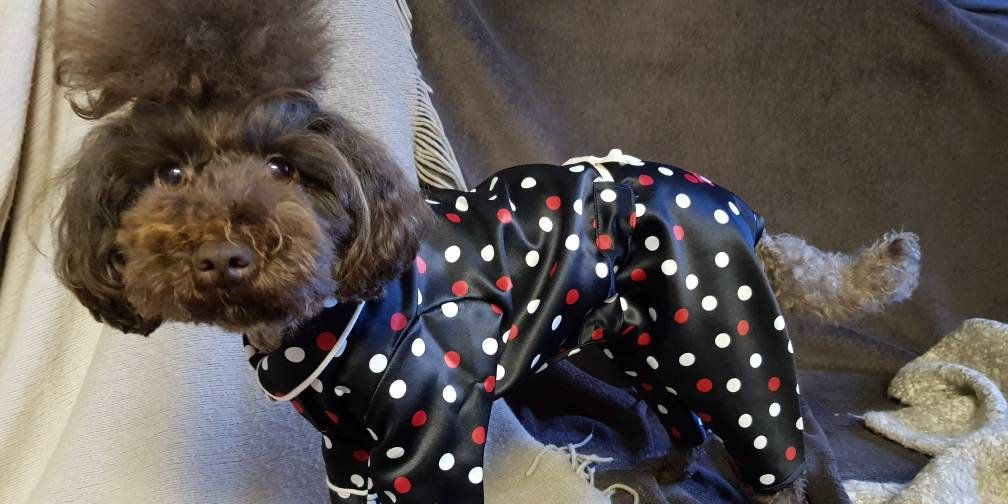 Matching Dog Robes