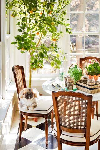 This Garden Room Was Once An Old Screened In Porch Indoor