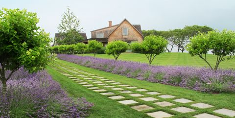 55 Beautiful Landscaping Ideas Best