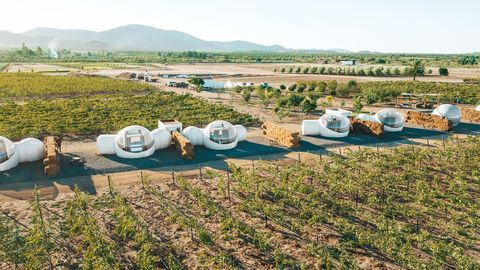 bubble HOTEL BURBUJA in mexico wine country