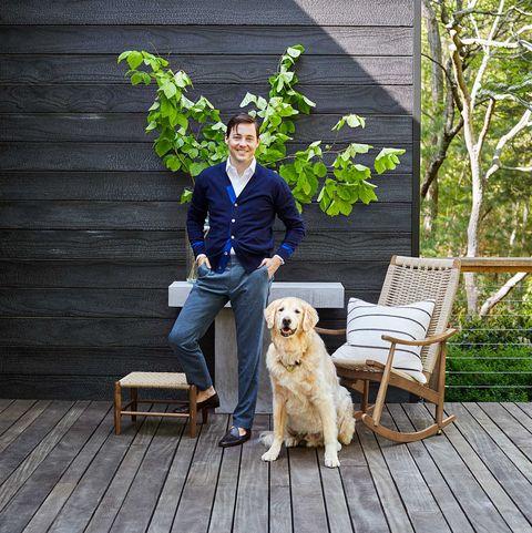 Dog, Canidae, Golden retriever, Tree, Companion dog, Home, Sporting Group, Sitting, Carnivore, Retriever,