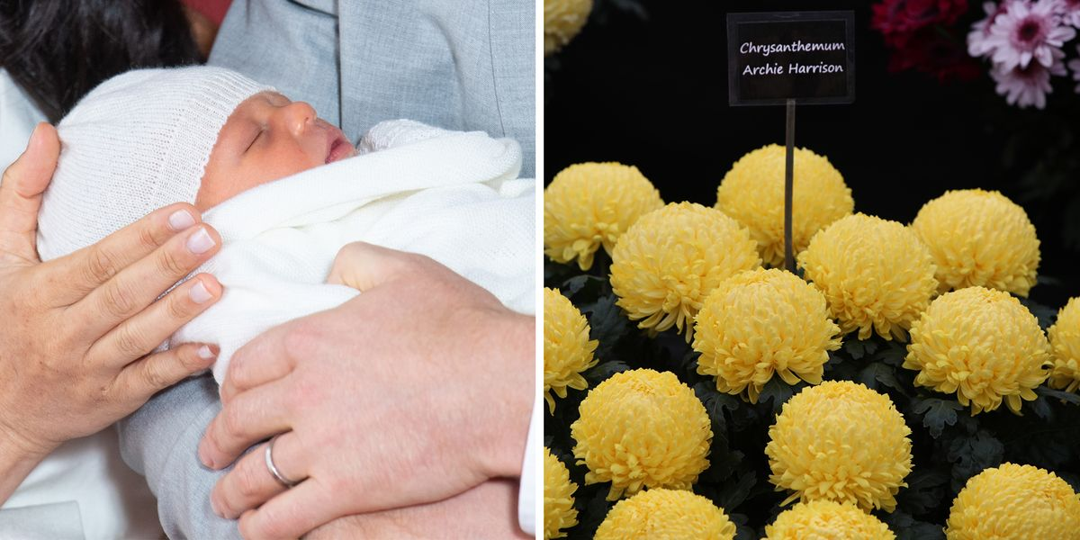 Archies Wedding Gifts: Why Royal Baby Archie Has A Flower Named After Him
