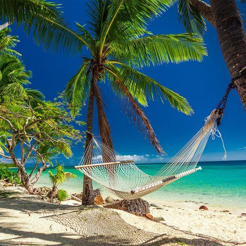 Empty hammock in the shade of palm trees,  Fiji