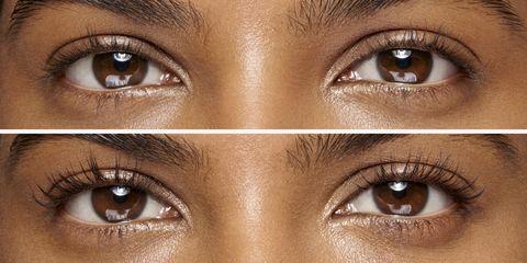Eyebrow, Face, Eye, Eyelash, Hair, Skin, Brown, Nose, Iris, Organ,