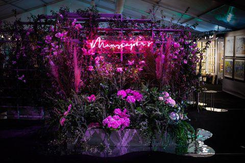 Purple, Pink, Flower, Violet, Light, Lighting, Plant, Magenta, Tree, Night,