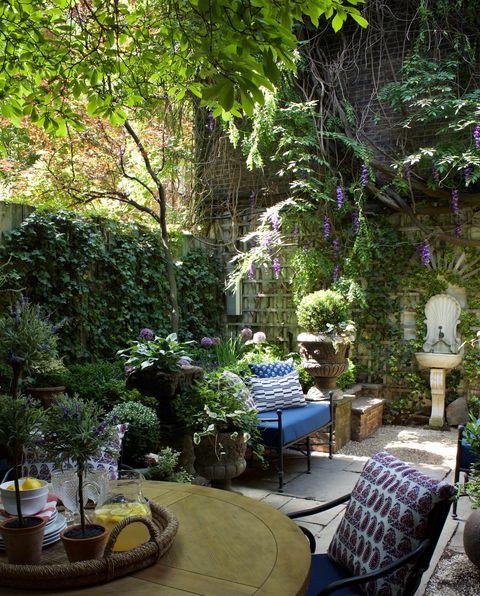 Garden, Backyard, Patio, Majorelle blue, Tree, Botany, Room, Plant, Yard, Landscaping,