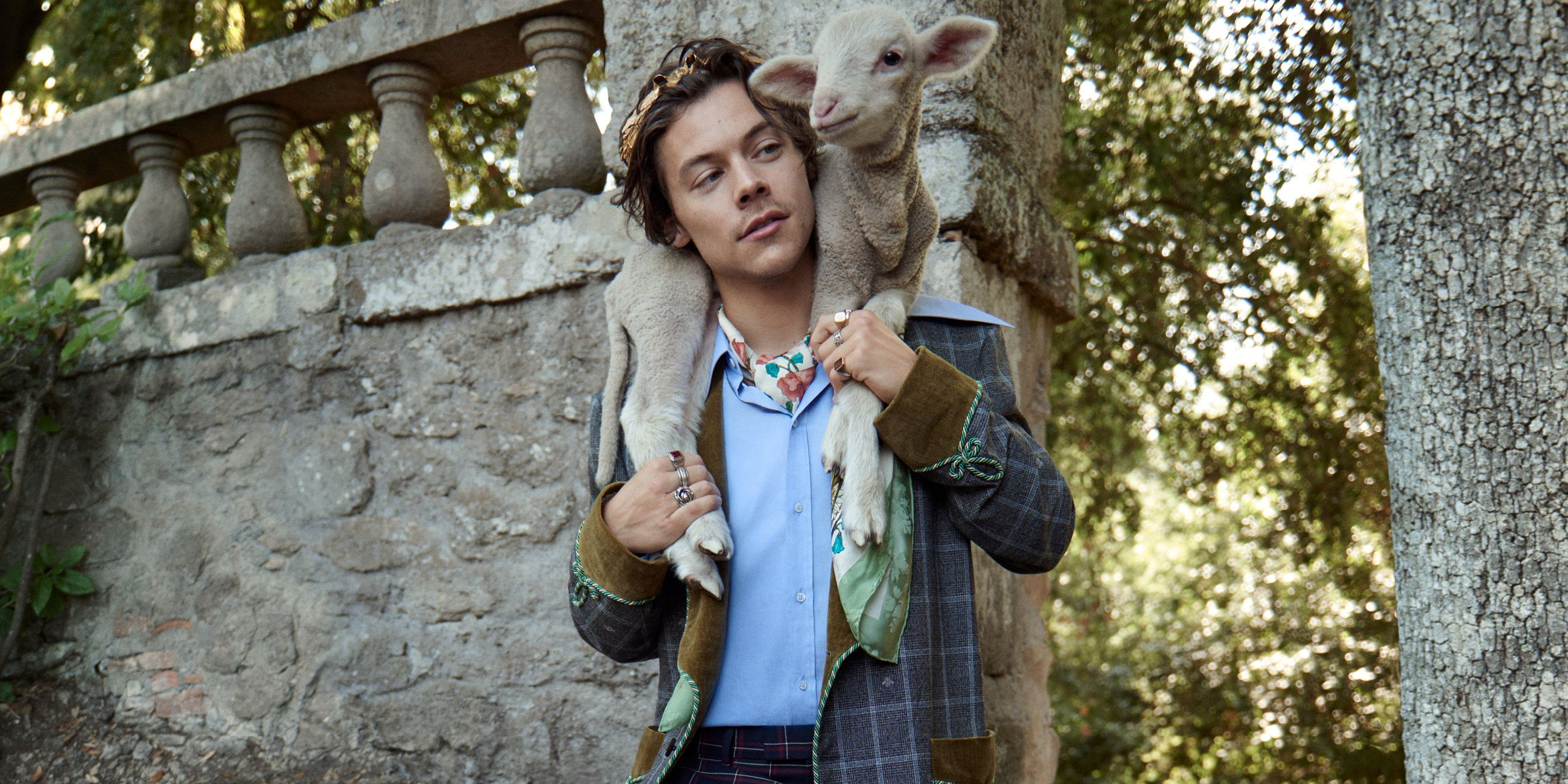 3b475ea0e Harry Styles Plays With Baby Animals in Gucci's New Menswear Tailoring  Campaign