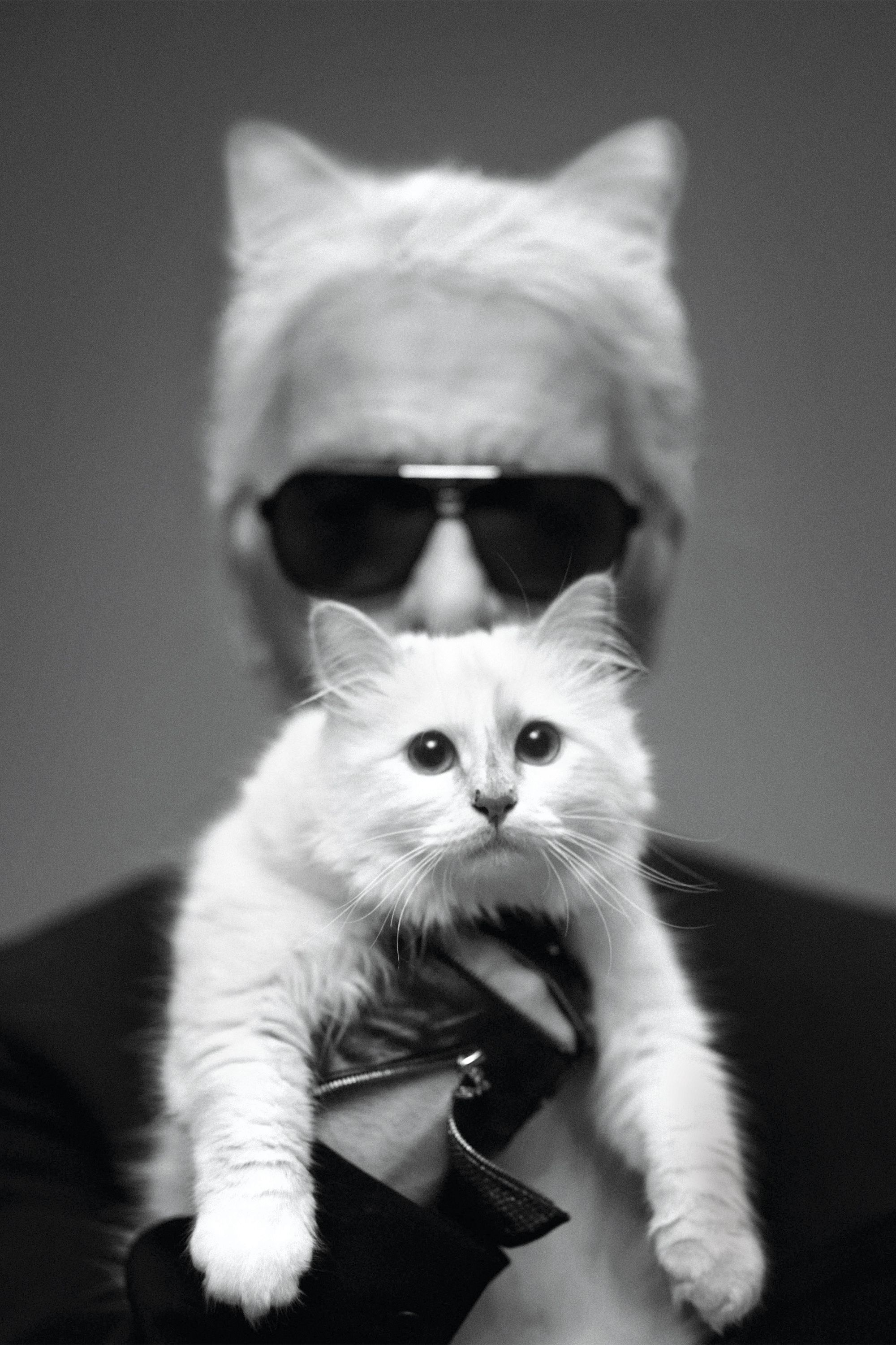The new face of Chanel, Margot Robbie, compares notes with Karl Lagerfeld on their animal companions.