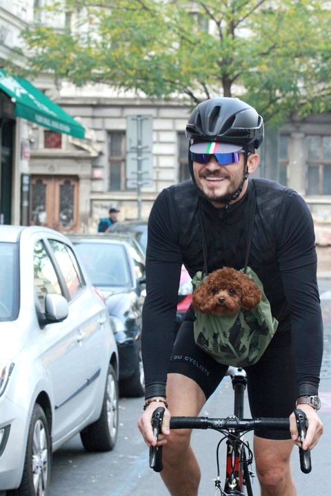 Range Rover Orlando >> Orlando Bloom Bikes with Adorable Dog - Orlando Bloom Puppy