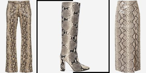 Footwear, Boot, Trunk, Tree, Knee-high boot, Shoe, Branch, Riding boot, Beige, Plant,