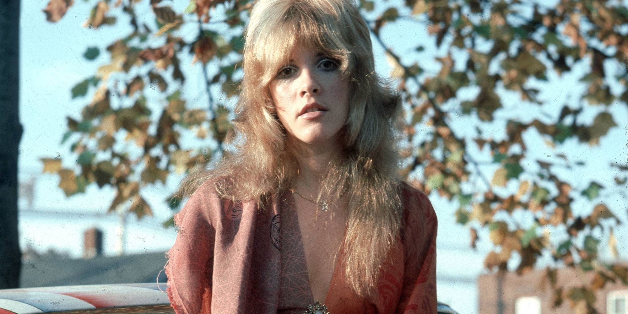 Nackte Bilder von Stevie Nick