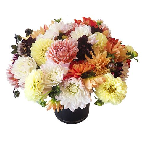 Flower, Flowering plant, Bouquet, Cut flowers, Plant, Floristry, Flower Arranging, Chrysanths, Floral design, Artificial flower,