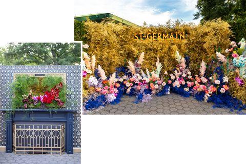Flower, Plant, Garden, Botanical garden, Grass, Tree, Floristry, Delphinium, Floral design, Shrub,
