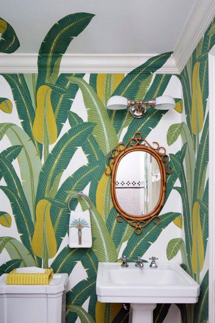 Green, Houseplant, Room, Plant, Wallpaper, Flower, Interior design, Tile, Ceramic, Nepenthes,