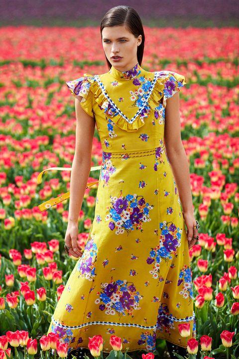 Clothing, Yellow, Dress, Spring, Flower, Fashion, Plant, Wildflower, Day dress, Summer,