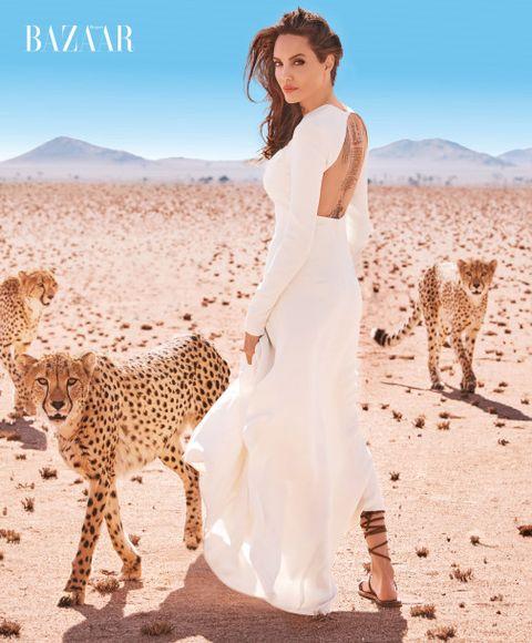 Photograph, Skin, Beauty, Dress, Felidae, Fashion, Wildlife, Summer, Shoulder, Photo shoot,