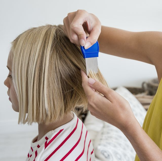 best head lice treatments