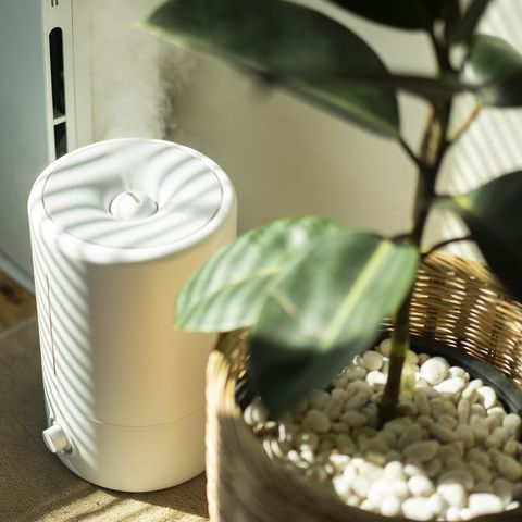 healthy home tips air purifier