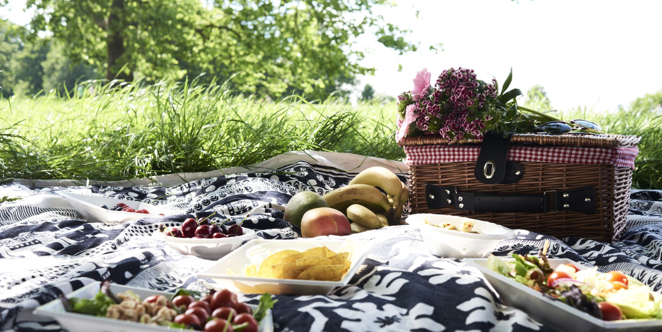 Picnic in a park in the summer