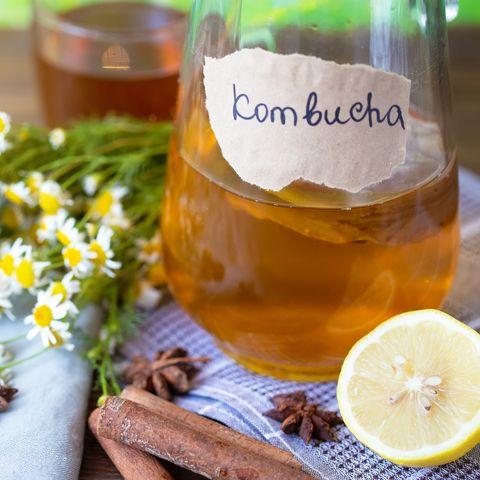 healthy tea kombucha with lemon and cinnamon recipe for homemade kombucha