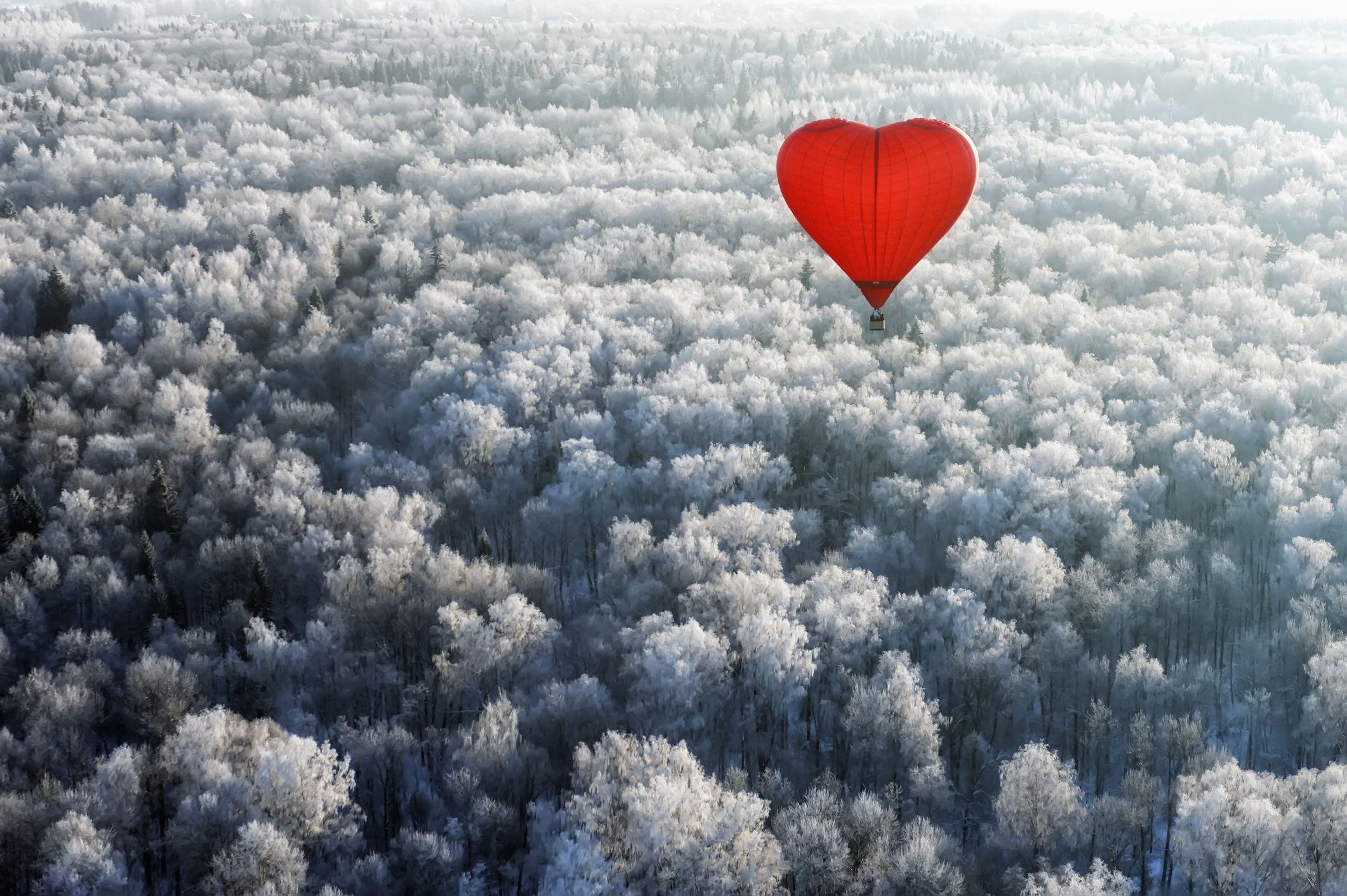 hjerteform varmluftsballonger som flyr over skogen