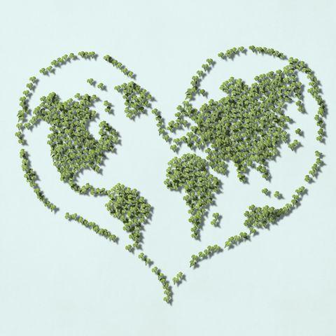 「世界環境デー」に食べたい! 地球にも人にもやさしい話題のエシカルスイーツ14選
