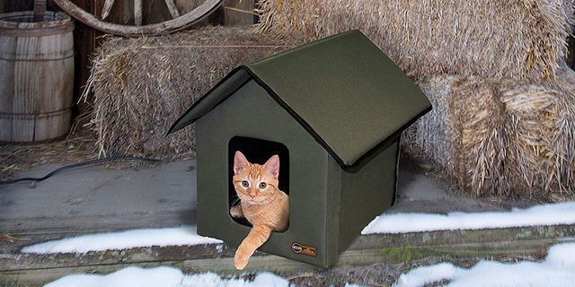 small orange cat in a heated green cat house on a rustic porch with haybells a wooden barrel and a wooden wheel in the background snow is on the ground