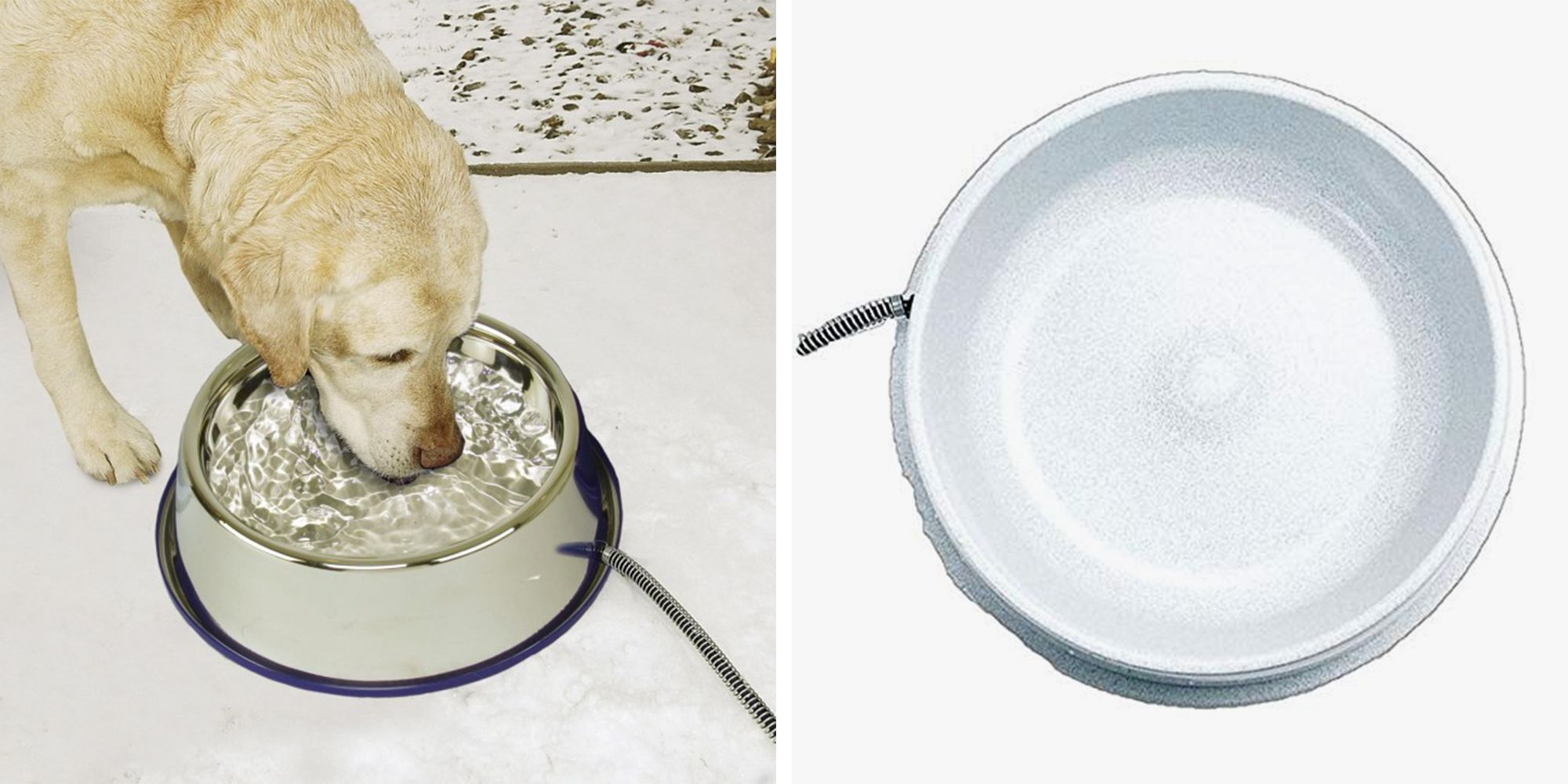 This Heated Pet Bowl Will Keep Water From Freezing and Animals Happy in the Outdoors