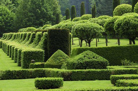 garden-topiaries-manor-d'eyrignac