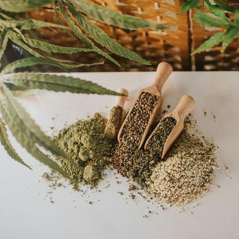 hemp in scoops in various forms