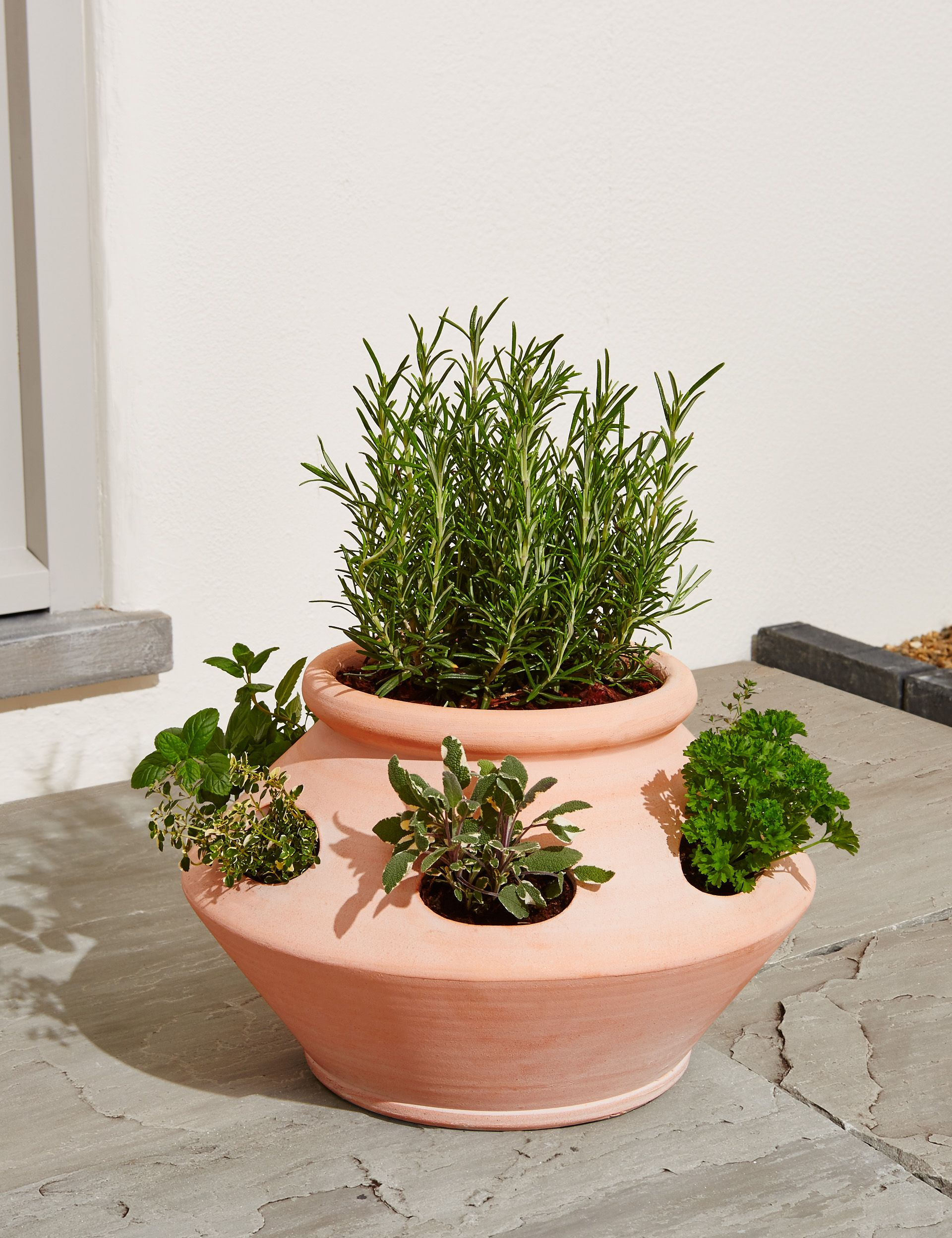 Marks Spencer S Terracotta Herb Planter Is A Garden Must Have