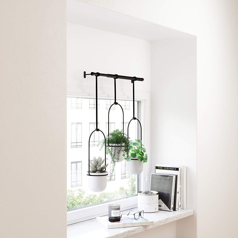 Umbra S Triflora Hanging Window Planter Indoor Herb Garden Review
