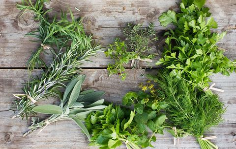 bundles of herbs