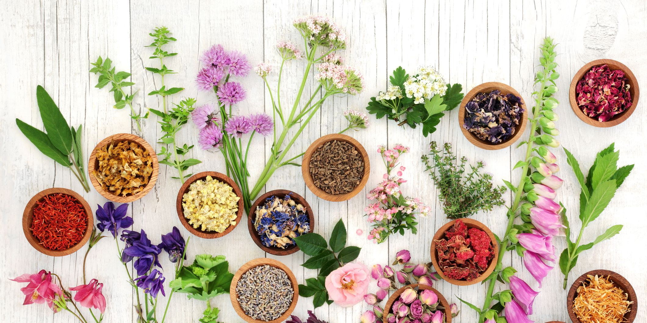 Herbs and Flowers for Herbal Medicine