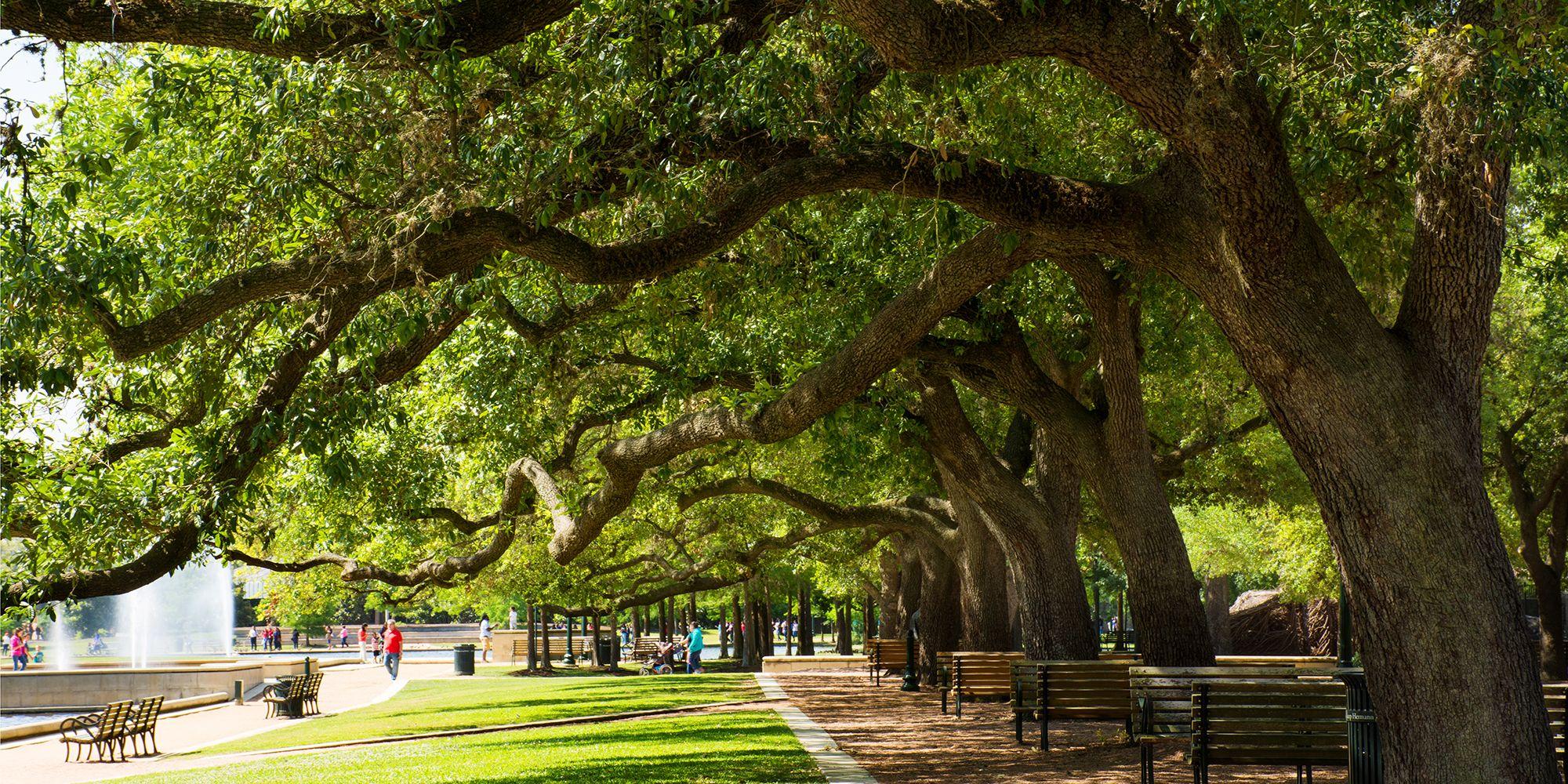 Hermann Park --Houston, Texas