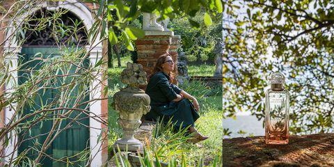 Photograph, Botany, Tree, Water, Grass, Garden, Adaptation, Plant, Sitting, Leisure,